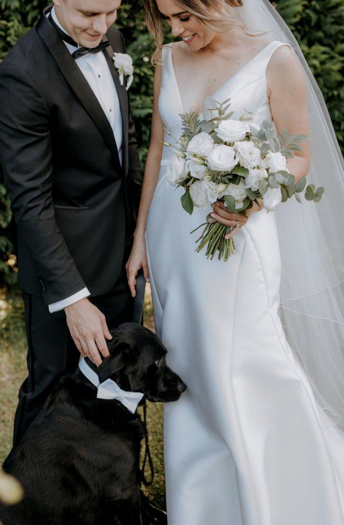 Wedding pet assistance